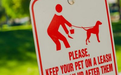 Dog Waste Disposal Systems for Property Managers