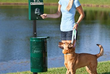 Dog Waste Solutions for Cities
